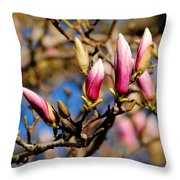 Awaking From Hibernation Throw Pillow by Frozen in Time Fine Art Photography