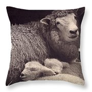 Babes in a Manger Throw Pillow by Sean Griffin