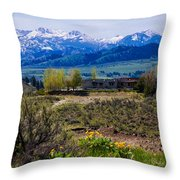 Balsamroot Flowers And North Cascade Mountains Throw Pillow by Omaste Witkowski