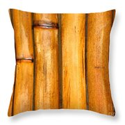 Bamboo Poles Throw Pillow by Yali Shi
