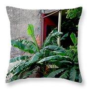 Bananas And Bricks Throw Pillow by Kathy K McClellan