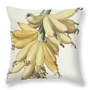 Bananas Throw Pillow by Pierre Joseph Redoute