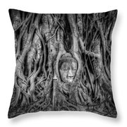 Banyan Tree Throw Pillow by Adrian Evans