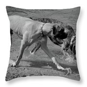 Beach Buddies Throw Pillow by DigiArt Diaries by Vicky B Fuller