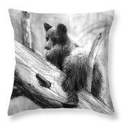 Bear Bottom Throw Pillow by Paul Sachtleben