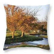 Bending Creek Throw Pillow by Jan Amiss Photography