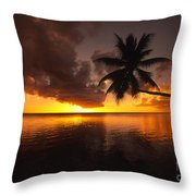 Bending Palm Throw Pillow by Ron Dahlquist - Printscapes