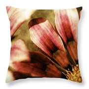 Blanket Flowers Throw Pillow by Bonnie Bruno
