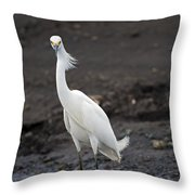 Blond Beauty.. Throw Pillow by Nina Stavlund