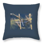 Blue Dragonfly Throw Pillow by Carol Groenen