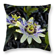 Blue Passion Flower Throw Pillow by Kelley King