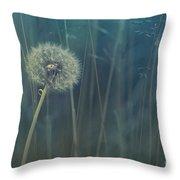 Blue Tinted Throw Pillow by Priska Wettstein