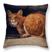 Bobcat On Ledge Throw Pillow by Frank Wilson