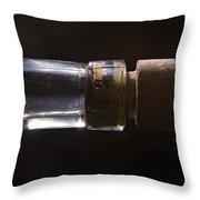 Bottle And Cork-1 Throw Pillow by Steve Somerville