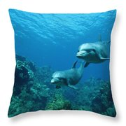 Bottlenose Dolphins And Coral Reef Throw Pillow by Konrad Wothe