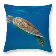Breathe Green Throw Pillow by Kimberly Mohlenhoff
