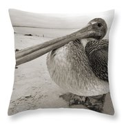 Brown Pelican Folly Beach Morris Island Lighthouse Close Up Throw Pillow by Dustin K Ryan