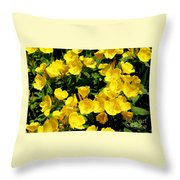 Buttercup Flowers Throw Pillow by Corey Ford