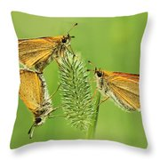 Butterflies Throw Pillow by Mircea Costina Photography