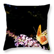 Butterfly Banquet 1 Throw Pillow by Will Borden