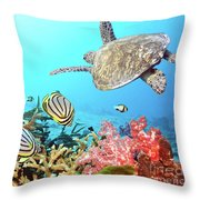 Butterflyfishes And Turtle Throw Pillow by MotHaiBaPhoto Prints