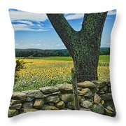 Buttonwood Farm Throw Pillow by Edward Sobuta