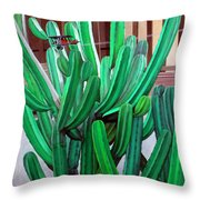 Cactus Fly By Throw Pillow by Snake Jagger