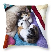 Calico Kitten On Towels Throw Pillow by Garry Gay