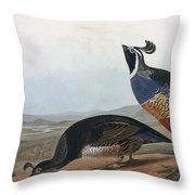 Californian Partridge Throw Pillow by John James Audubon