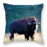 Call Of The Wild Throw Pillow by Jan Amiss Photography