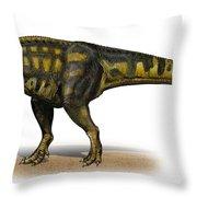Carcharodontosaurus Iguidensis Throw Pillow by Sergey Krasovskiy