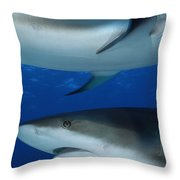 Caribbean Reef Sharks Swim Throw Pillow by Brian J. Skerry