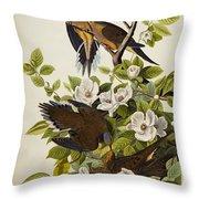 Carolina Turtledove Throw Pillow by John James Audubon
