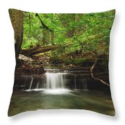 Cascade Happy Trail Throw Pillow by Michael Peychich