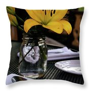 Casual Affair Throw Pillow by Linda Knorr Shafer