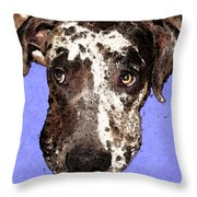 Catahoula Leopard Dog - Soulful Eyes Throw Pillow by Sharon Cummings
