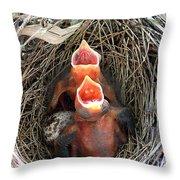 Cavernous Cardinals Throw Pillow by Al Powell Photography USA
