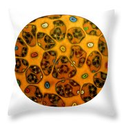 Cell Network Throw Pillow by Nancy Mueller