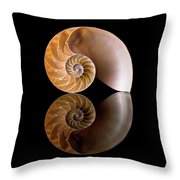 Chambered Nautilus Throw Pillow by Jim Hughes
