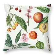Cherries And Other Fruit-bearing Trees  Throw Pillow by Elizabeth Rice