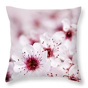 Cherry Blossoms Throw Pillow by Elena Elisseeva