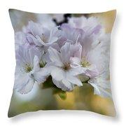 Cherry Blossoms Throw Pillow by Frank Tschakert