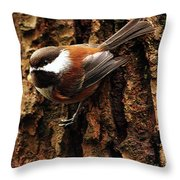 Chestnut-backed Chickadee On Tree Trunk Throw Pillow by Sharon Talson