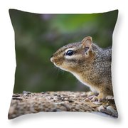 Chipmunk Throw Pillow by Andrea Silies