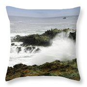 Coastal Expressions Throw Pillow by Donna Blackhall
