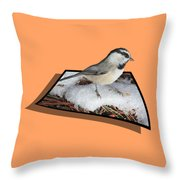 Cold Feet Throw Pillow by Shane Bechler