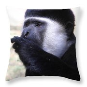 Colobus Monkey Throw Pillow by Aidan Moran
