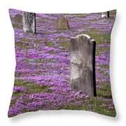 Colonial Tombstones Amidst Graveyard Phlox Throw Pillow by John Stephens
