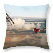 Colourful Encounter Throw Pillow by Pat Speirs