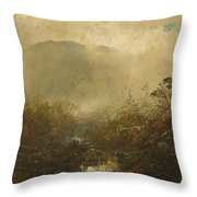 Coming Storm In The Adirondacks Throw Pillow by William Sonntag